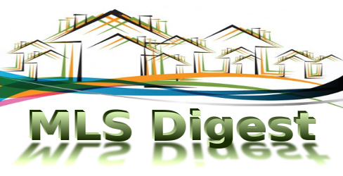 Multiple Listing Service or Multi-Level Security domain name